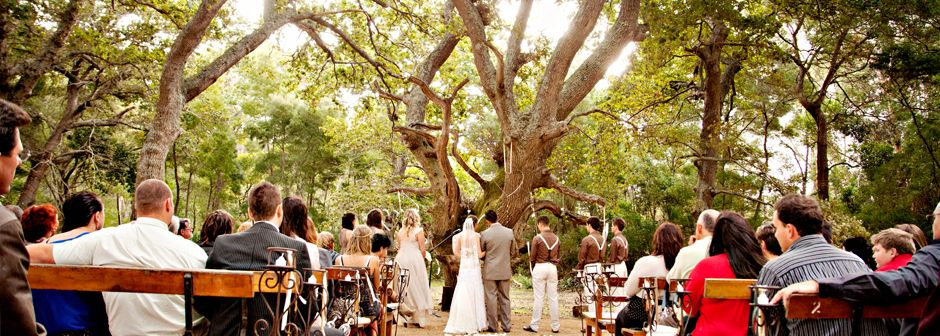 Our Favourite South African Forest Wedding Venues Ideas To Inspire You Yes Baby