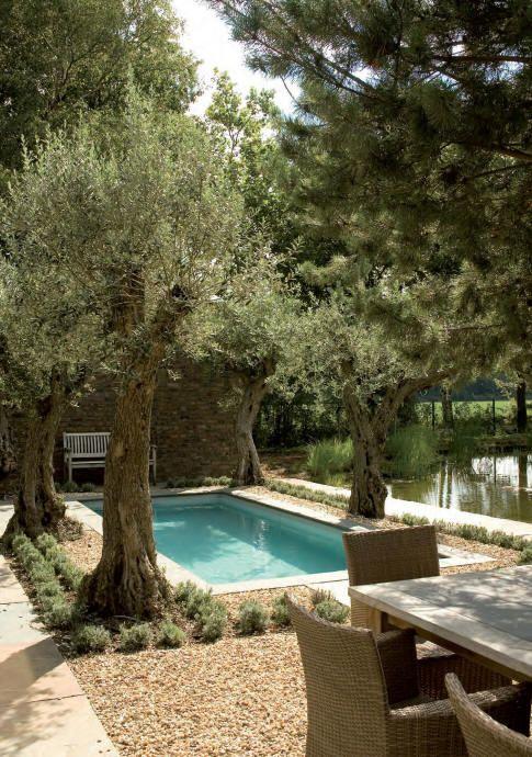 Mediterranean Garden Pool Jacques Van Leuken Piscines De Reve