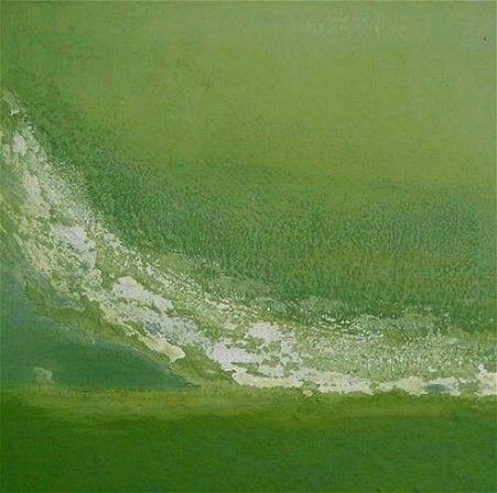 Huile et poudre de marbre sur toile 50 x 50 cm PEINTURE ART