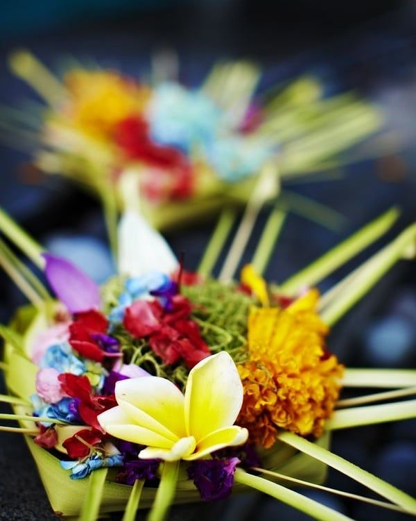[New] The 10 Best Travel (with Pictures) -  A bright Monday morning with bright and fragrant flowers --------------- ----- #grandixora #travel #traveling #balineseofferings #light #trip #holiday #photooftheday #kuta #travelling #tourism #bali #beautiful #bestoftheday #love #happy #art #nature #life #amazing #inspiration #escape #wanderlust #fantasticuniverse