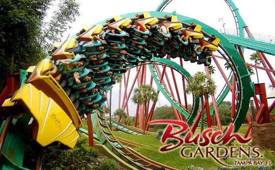 a4063ef0006d1a0e8192db43d9dc2bb6 - How Far Is Busch Gardens From Universal Studios