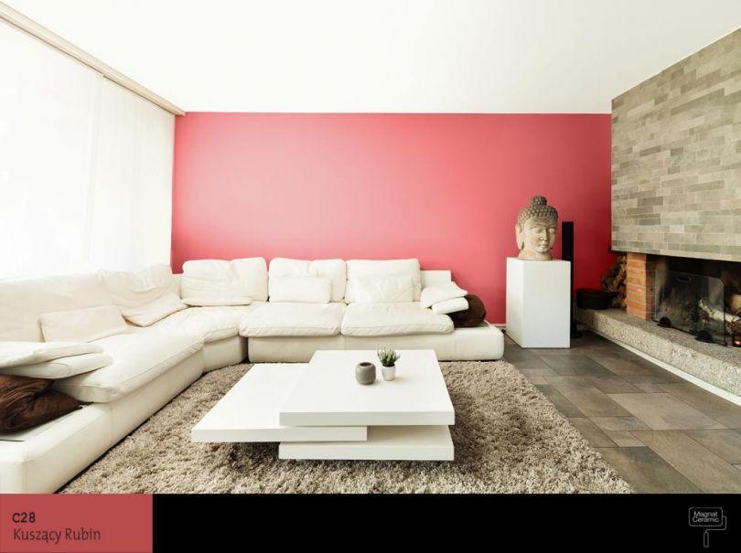 Cegła - czerwień - bordo | Salon inspiracje | Pinterest