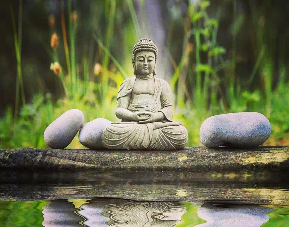 120 Buddha Ideas Buddha Scott Adkins Undisputed 4