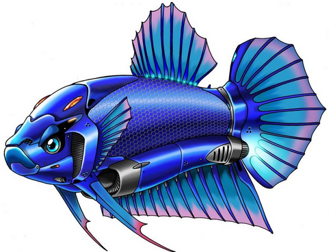 Gambar Picture Animated Wallpaper Images Betta Fish Animasi Dunia Ikan Cupang Sapawarga Ikan Cupang Ikan Betta