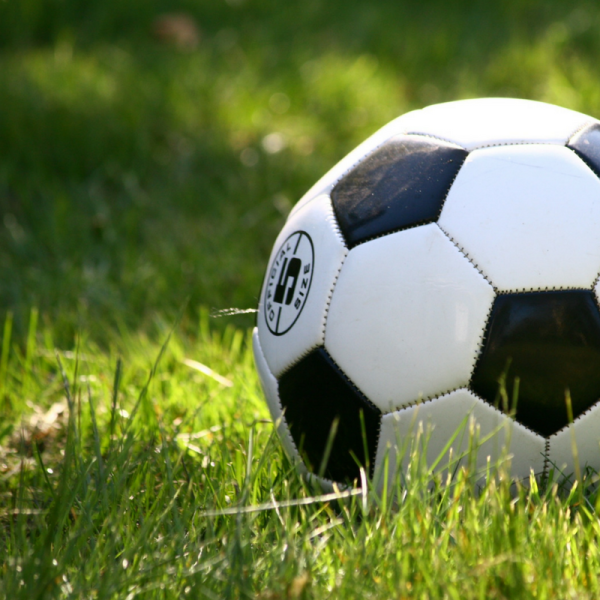 Schedule for the New York Red Bulls in NJ Soccer stars