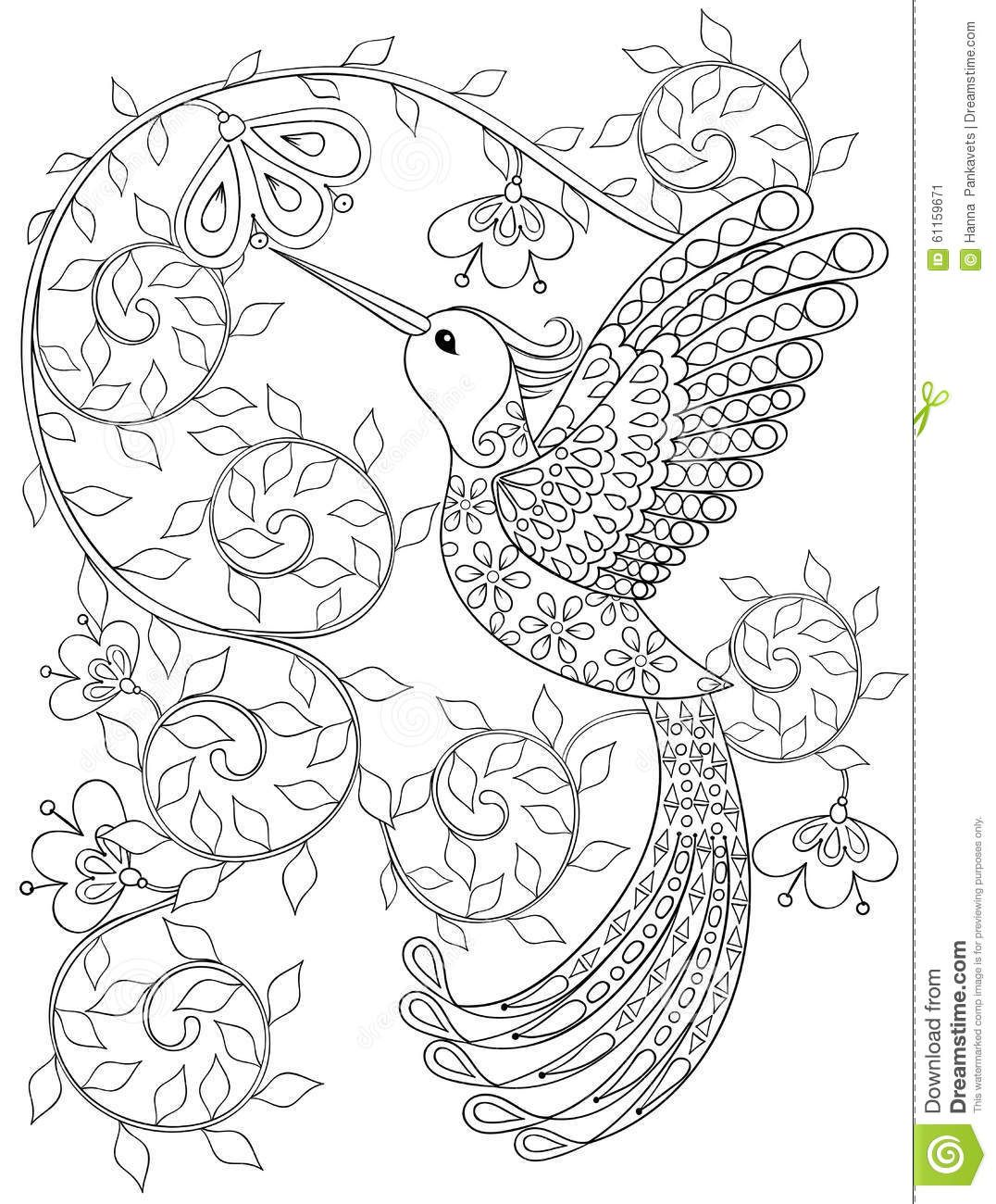 Coloring Page With Hummingbird Zentangle Flying Bird For Adult