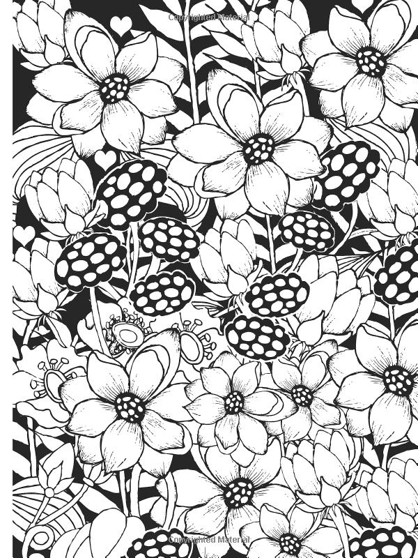 Amazon Creative Haven Midnight Garden Coloring Book