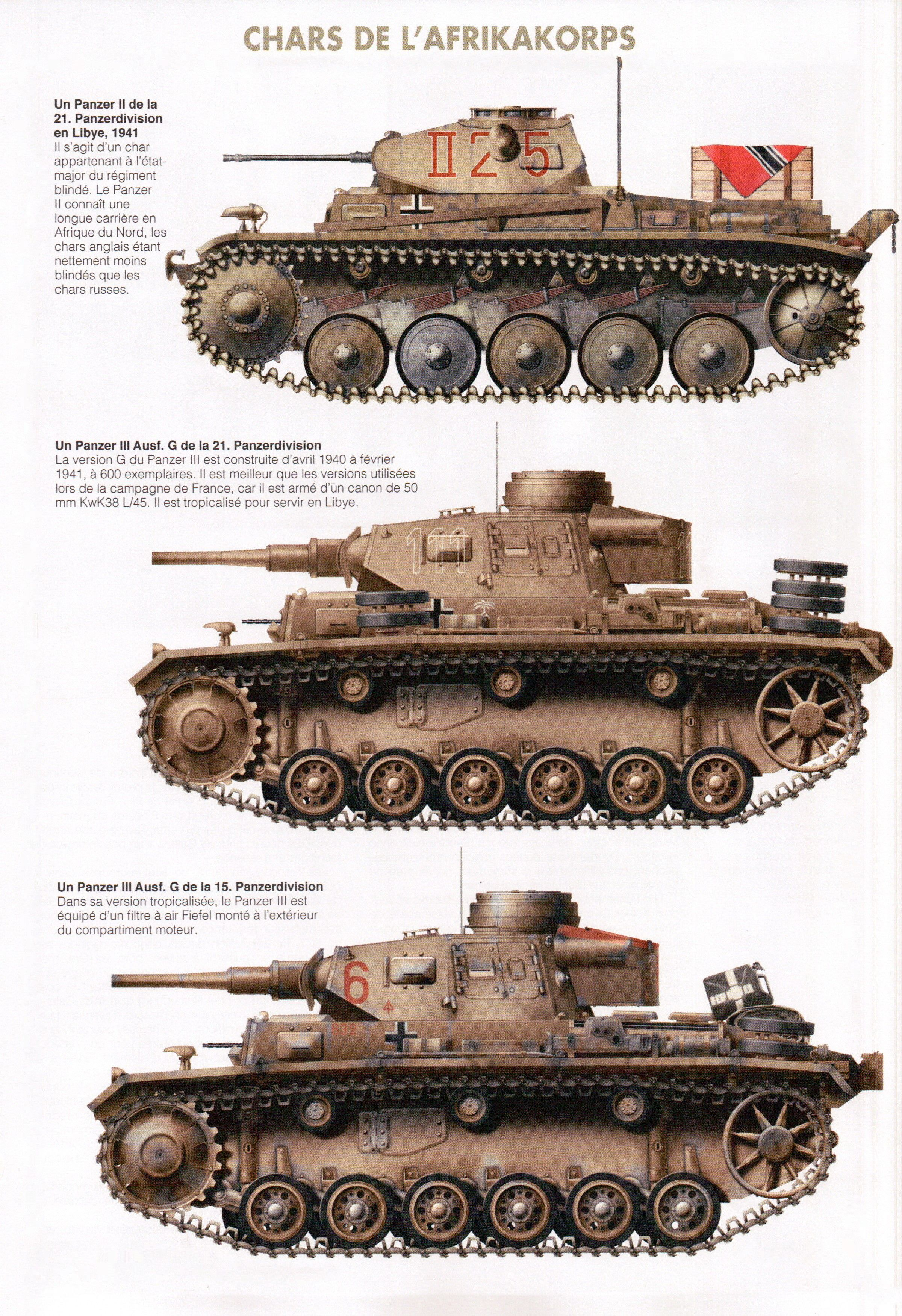 CHARS DE L'AFRIKAKORPS | The Mailed Fist | Ww2 tanks