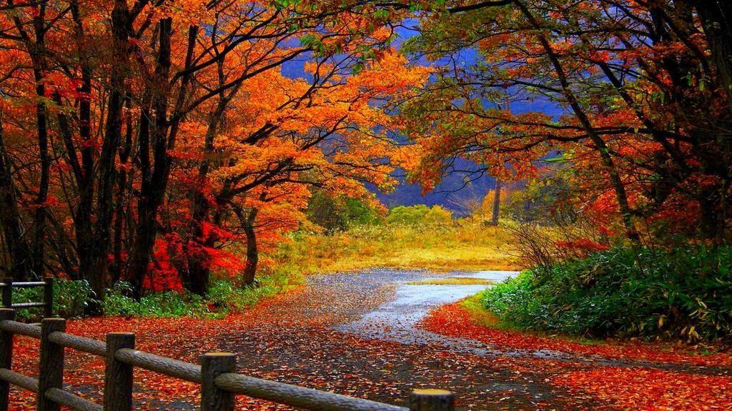 ʊʀʀʊȶɨǟ ɖɛʟǟ On Twitter Desktop Wallpaper Fall Autumn Wallpaper Hd Landscape Wallpaper Beautiful scenery wallpaper photo