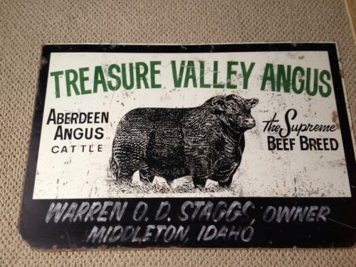 Very Old Original Black Angus Cow Farm Sign Wow Farm Signs Antique Signs Farm Yard