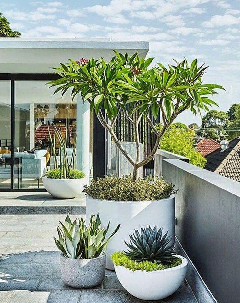 45 Wonderful Modern Front Yard Landscaping Ideas Modern Garden