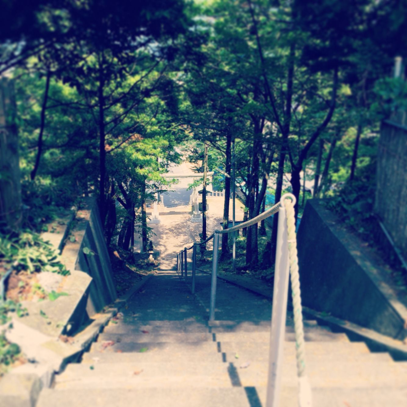 夏木立、神社 | 幻想的画像板 | pinterest | 幻想的 と 神社