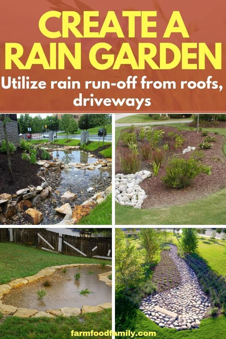 Create A Rain Garden Utilize Rain Run Off From Roofs Driveways Gardening Ideas Garden Style Backyard Rain Garden Design Rain Garden Diy Rain Garden