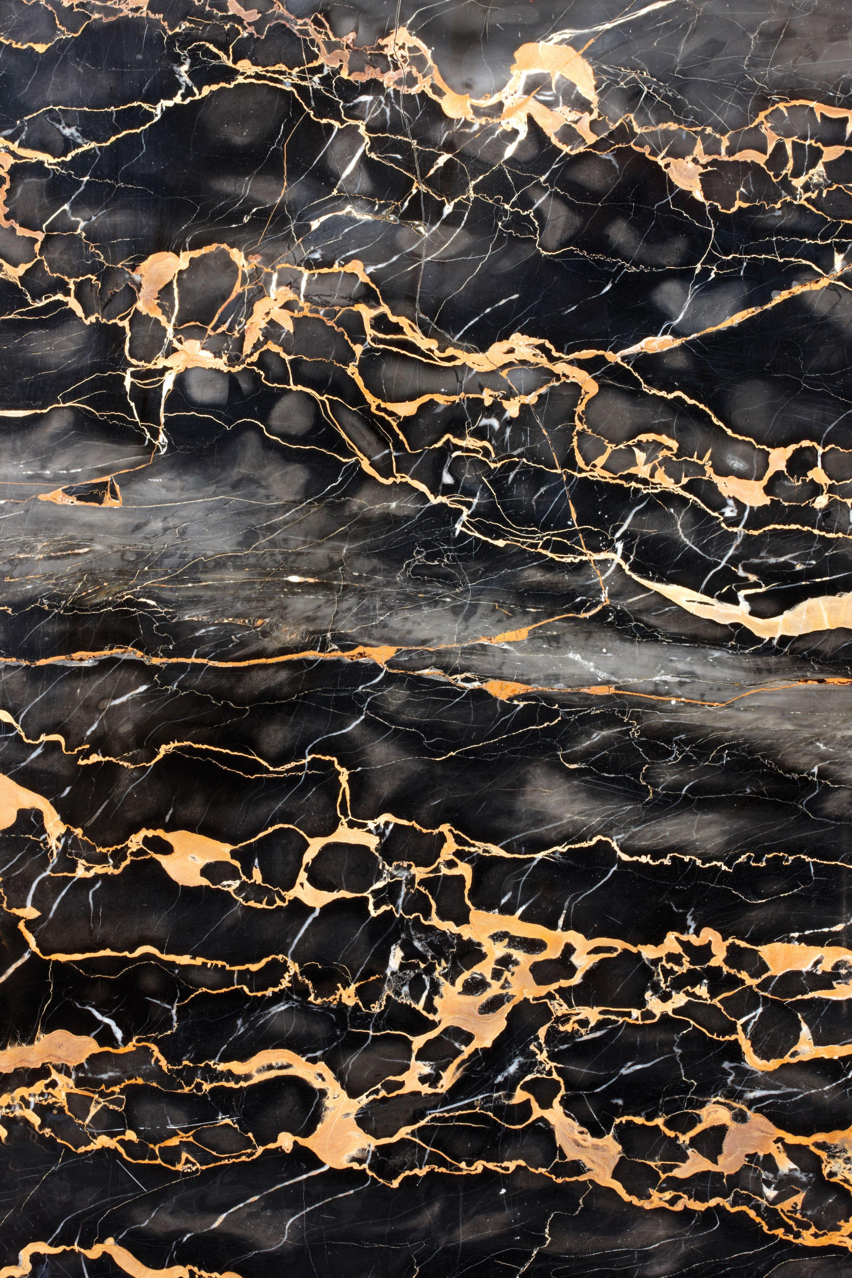 Aurea Flamma Collection SolidNature (con imágenes