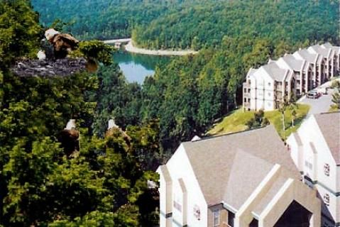 Eagles Nest Indian Point Cheap Vacation Rentals At