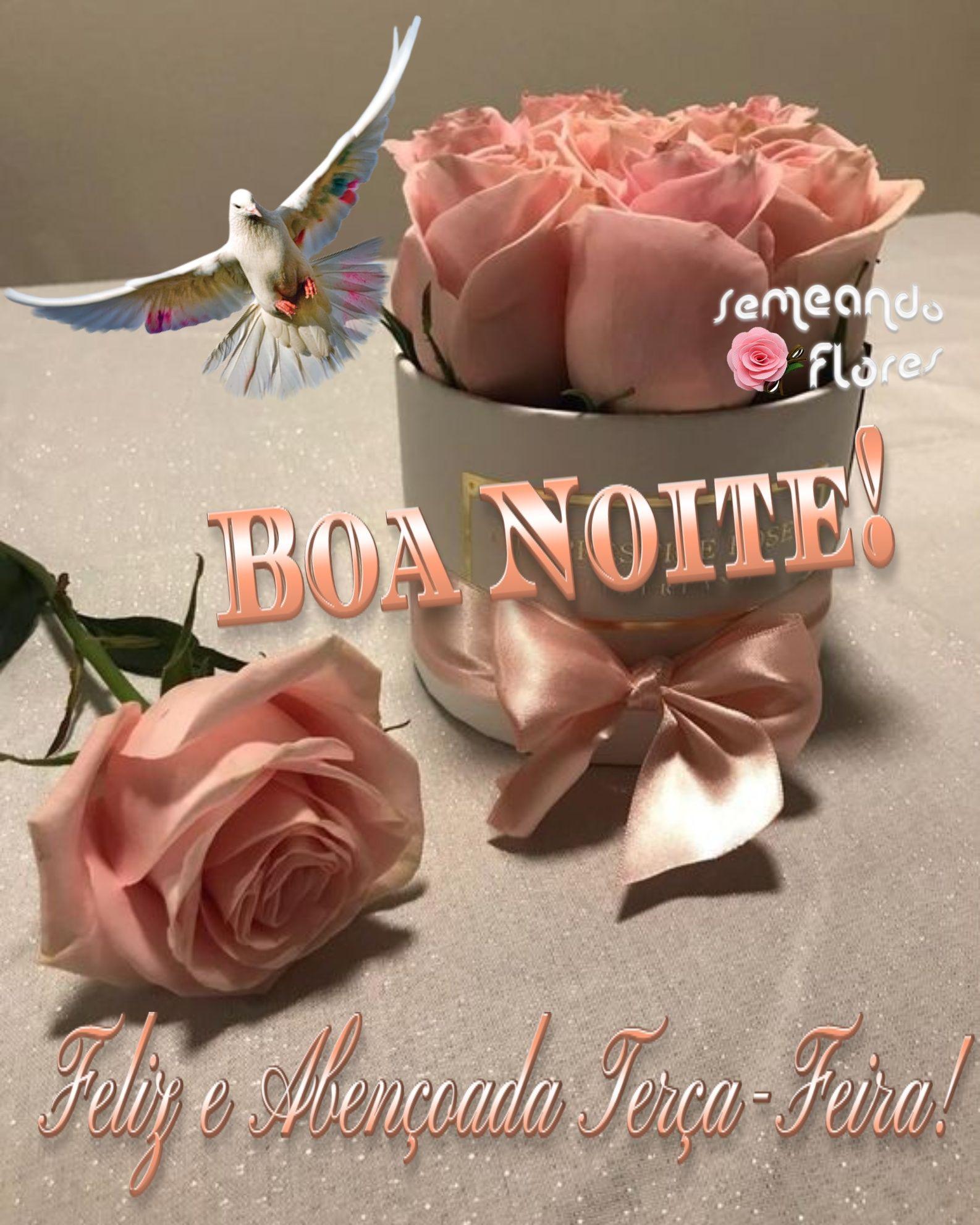 Pin De Cidinha Nobrega Em Semeando Flores 6 Mensagem Com Flores