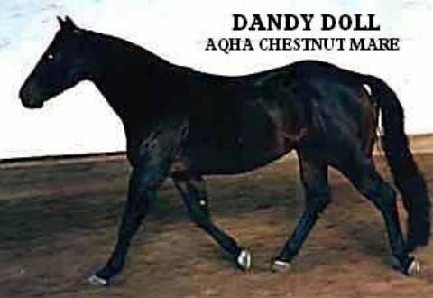 5 Dandy Doll