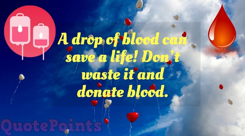 20 Best Blood Donation Quotes