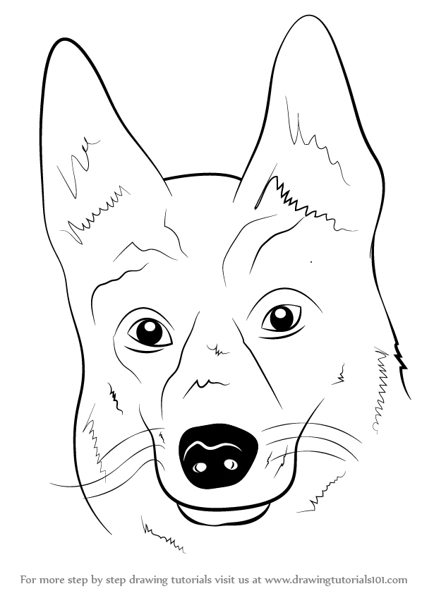 Learn How to Draw German Shepherd Dog Face (Farm Animals ...