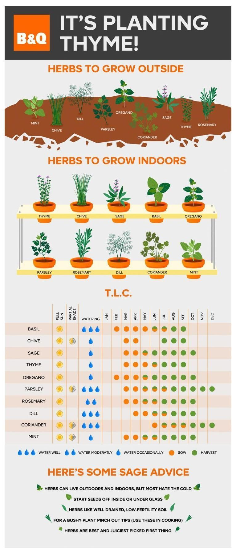 Create A Garden To Remember With This Useful Advice. | Herb Garden Indoor | Vertical Herb Gardens | Herb Planter Ideas | Companion Planting Herbs In Pots. #growyourownfood #nochemicals #vegetablegardening #herbs garden