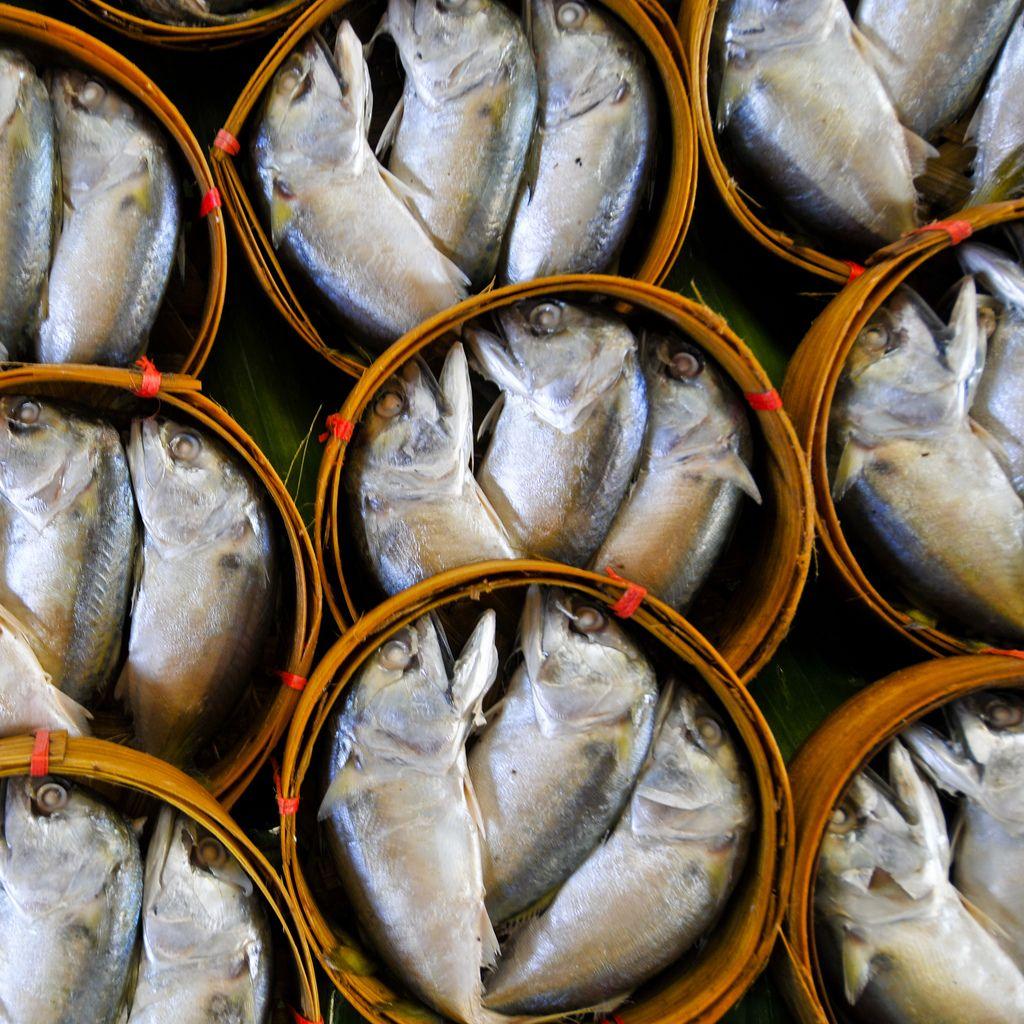 Fish Railroad market in Samuth Song Kram Thailand