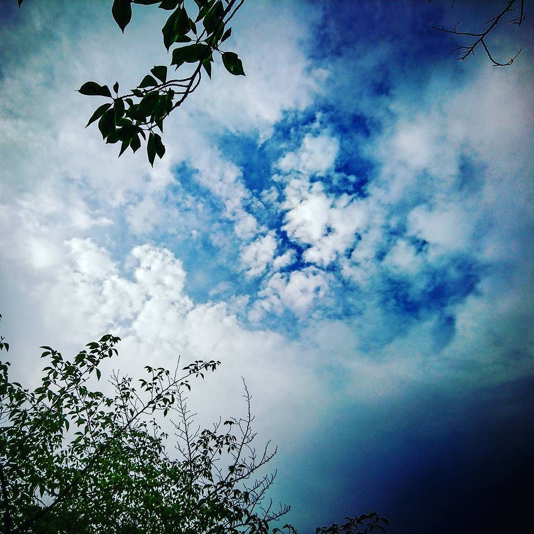 walk_around  #morning #pond #cloudy walk_around  #morning #pond #cloudy