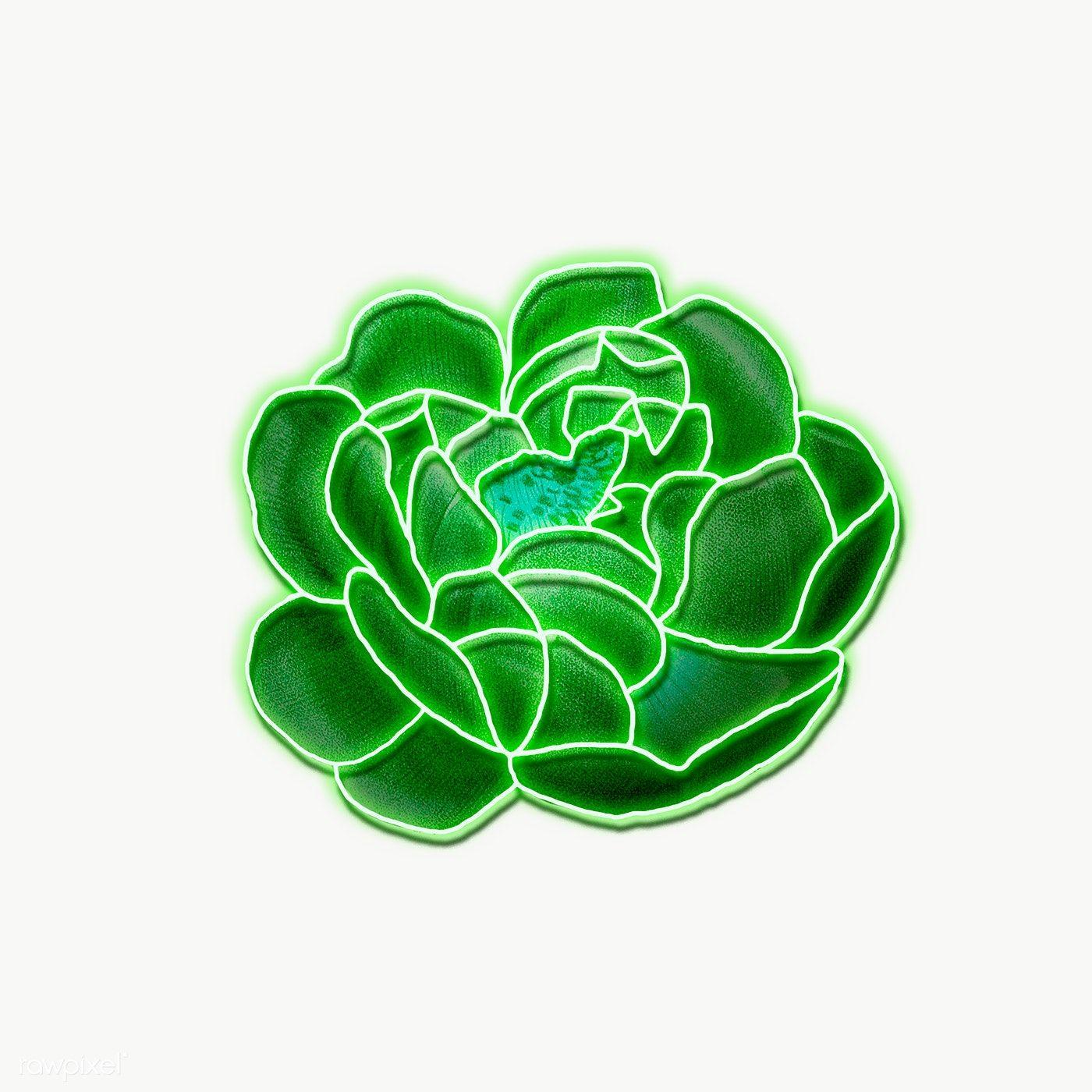 Neon Green Rose Transparent Png Premium Image By Rawpixel Com Awirwreckkwrar Flower Illustration Rose Illustration Green Rose