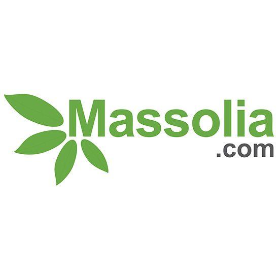 Développer les technologies vertes au Maroc – Solaire, énergie éolienne, environnement, écologie, développement durable