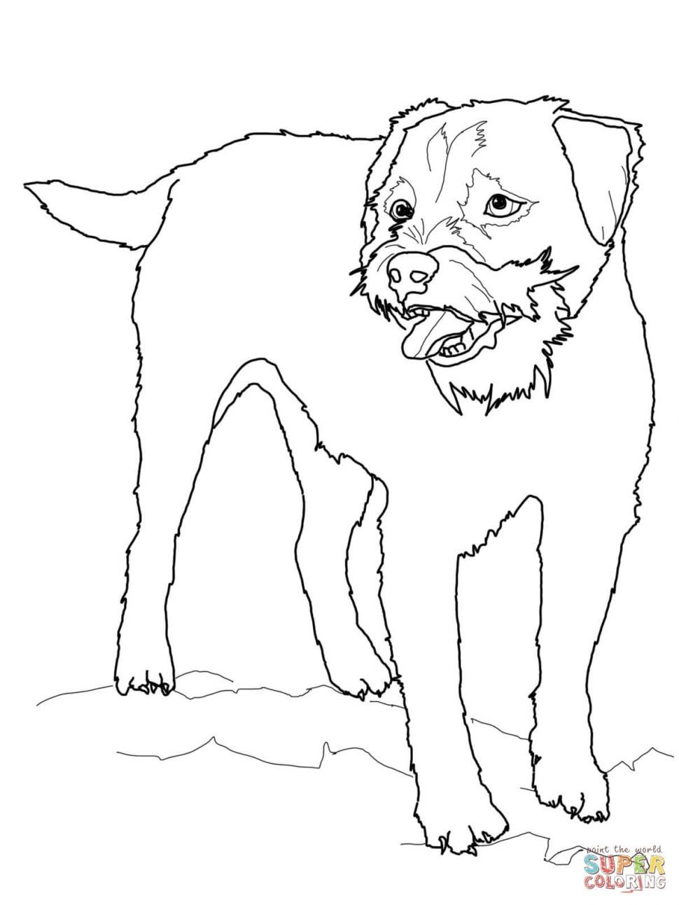 Brussels Griffon Coloring Pages Printable Dog Coloring Page Dog Coloring Book Puppy Coloring Pages