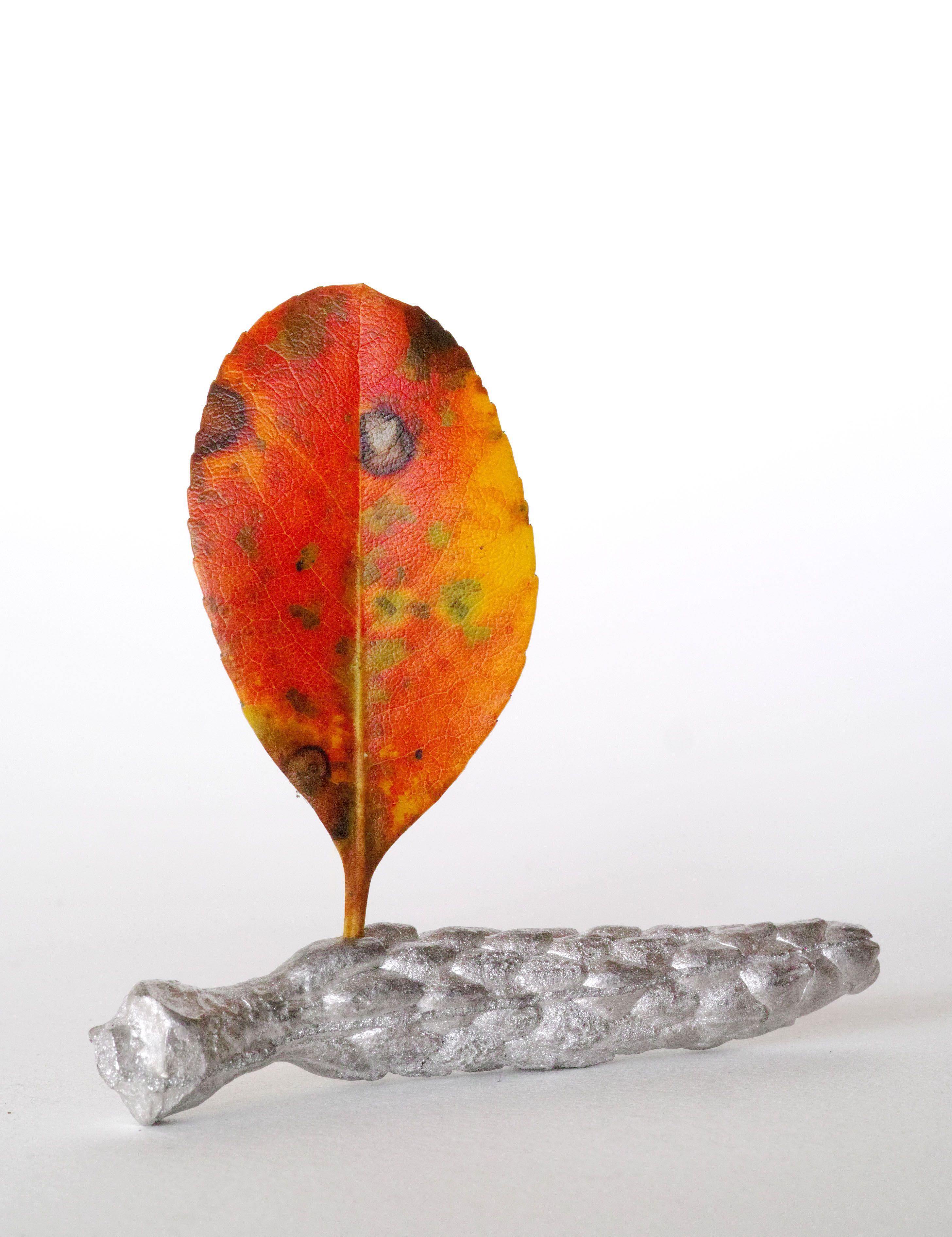 ikebana ikebanagii  Ryuichi Nagira 2016/03/30 車輪梅(シャリンバイ)+木蓮(モクレン)のタネ(スズ鋳物)  : Rhaphiolepis indica var. umbellate+ Seed of the Magnolia quinquepeta(Tin casting)