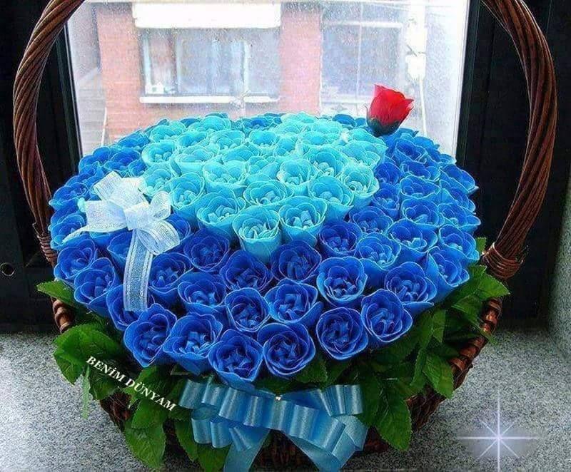 صور ورد للمرتبطين وباقات زهور متنوعة وخلفيات ورود مذهلة موقع مصري Rose Wallpaper Blue Roses Artland