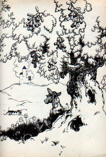 Cork Tree Bull Under