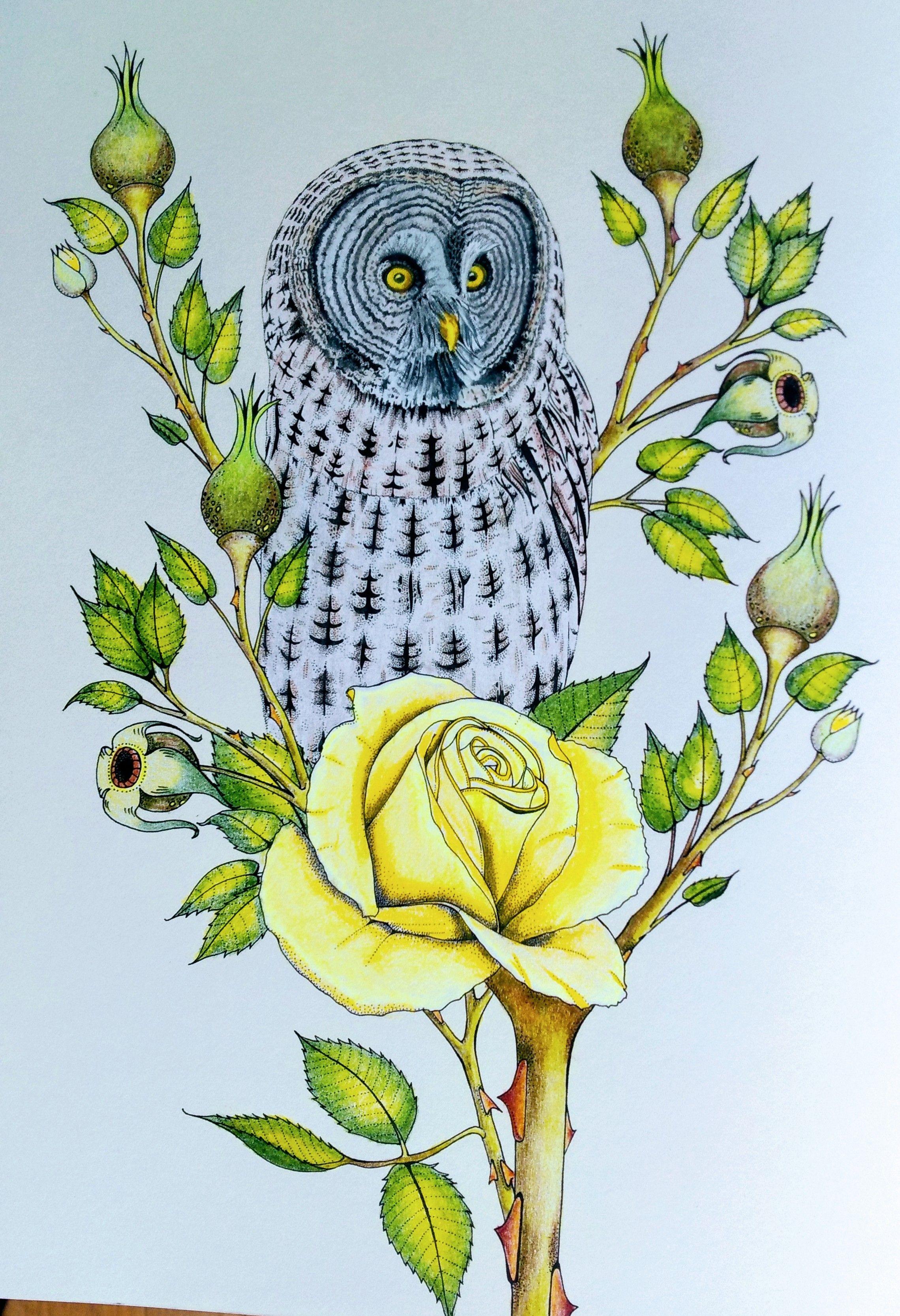 uit het boek vogel paradijs van daisy fletcher  from the