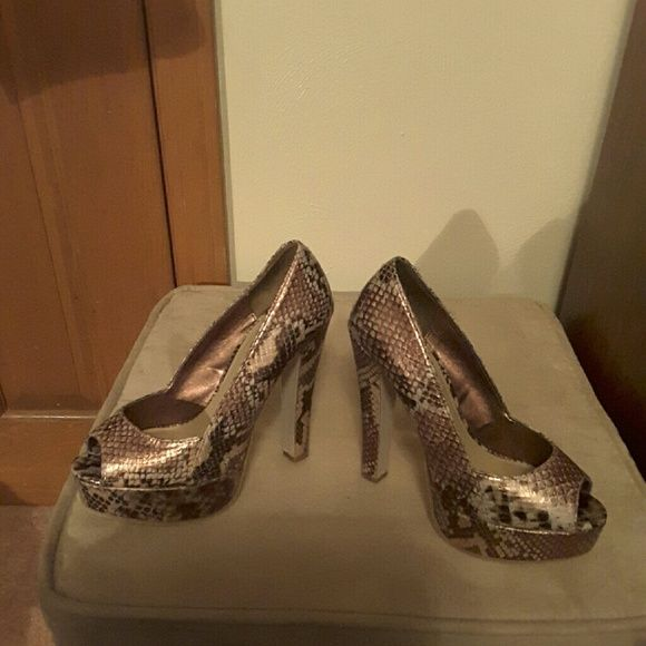 Steve Madden heels 5 1/2