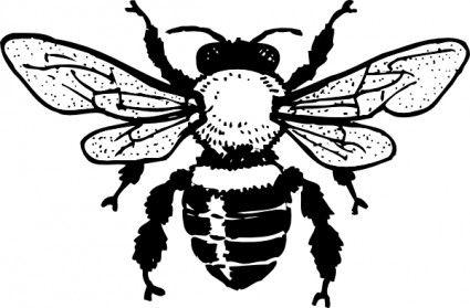 Bee And Honey Clipart Clipart Panda Free Clipart Images Bee Images Vintage Honey Bee Bee Art