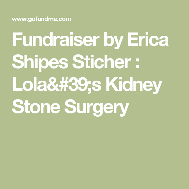 Fundraiser by Erica Shipes Sticher : Lola's Kidney Stone Surgery