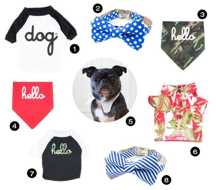c4c300ec52e9 Stylish Summer Necessities from Lucy   Co. (Dog Milk)