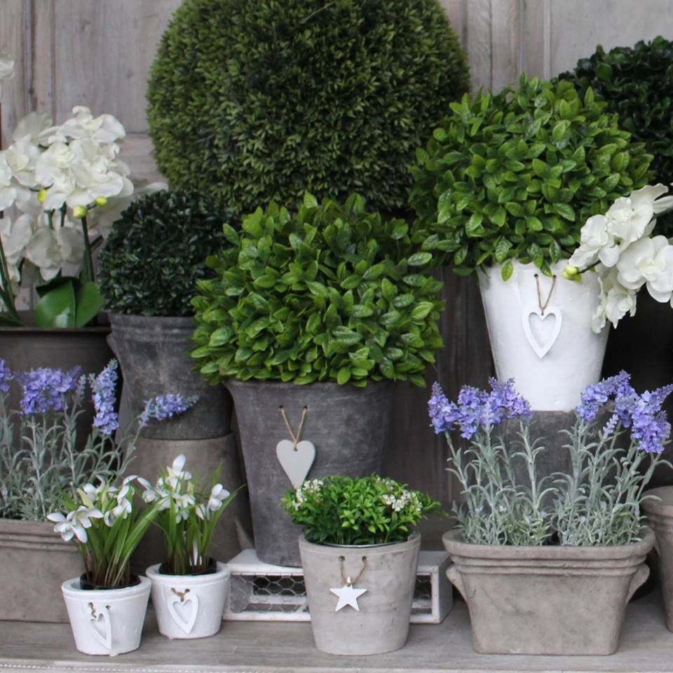 www.lotsofliving.co.uk Container gardening, Summer