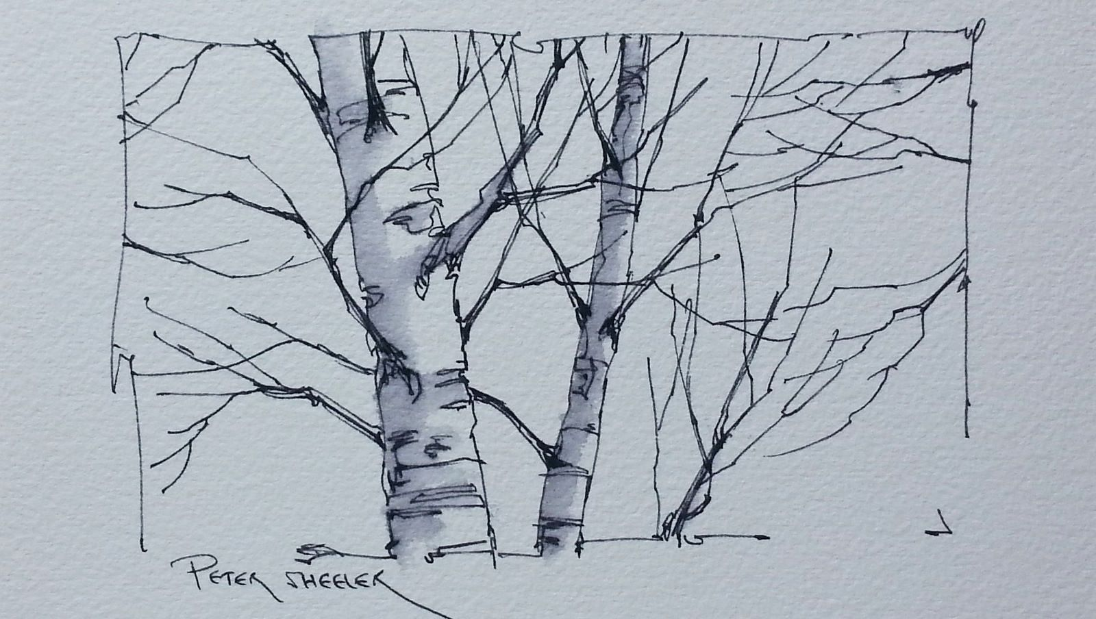 A Simple Video On Drawing Better Trees In 2020 Tree Drawing