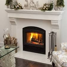 image result for pictures of opel 2 fireplace fireplaces pinterest rh pinterest com opel 2 fireplace specs opel 2 fireplace reviews