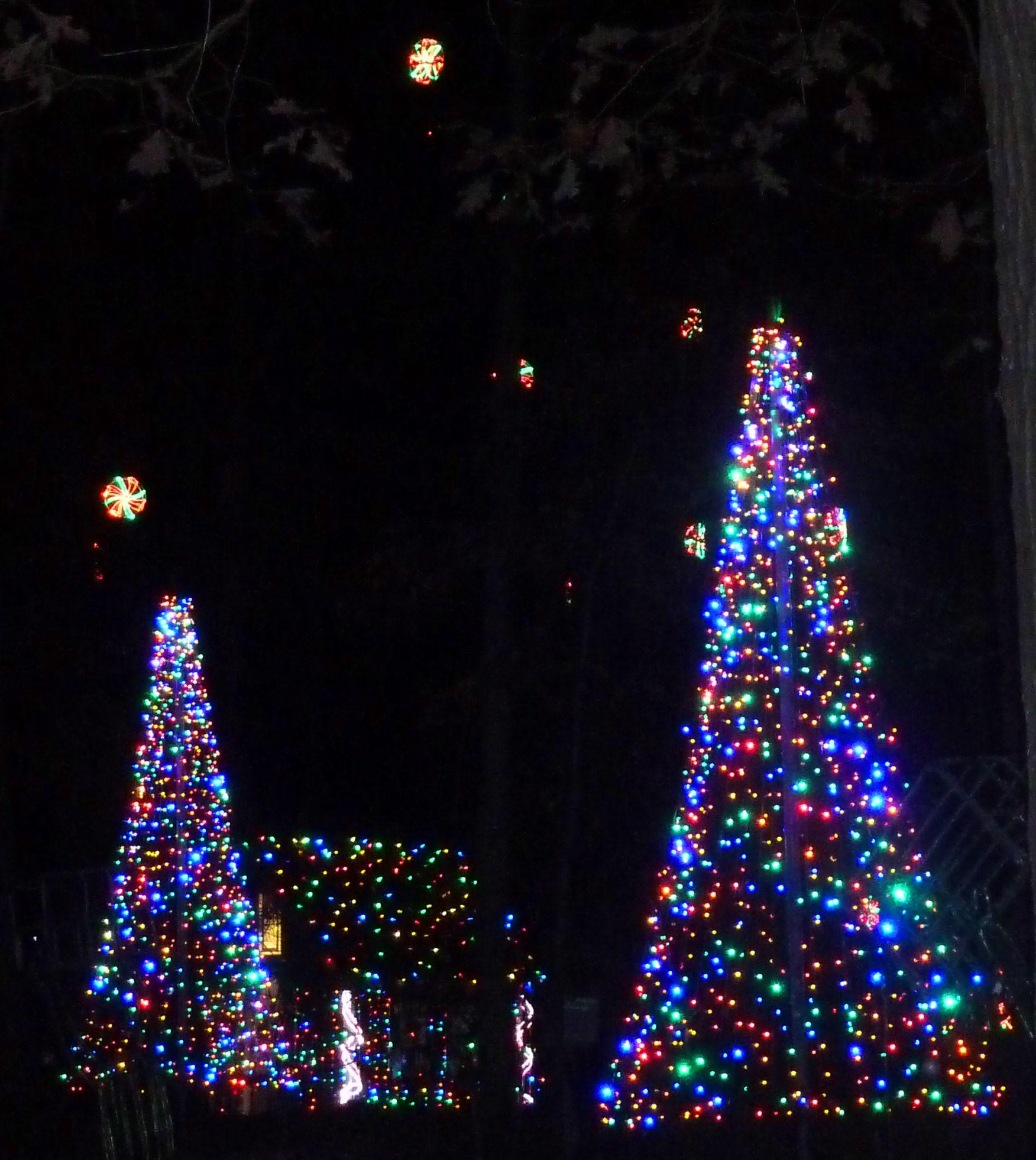 a4138ee47e342f57d938eea8d4fdbed6 - Garvan Gardens Hot Springs Christmas Lights