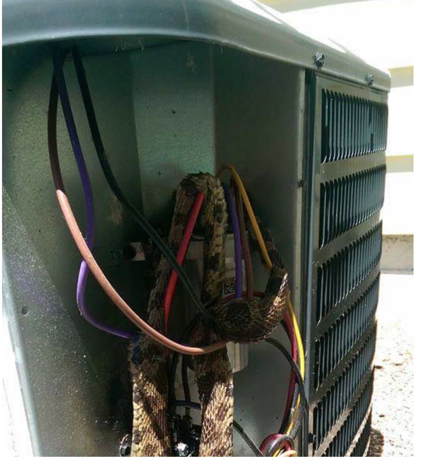 Pin By Sharon Davis On Hvac Snake Eyes Hacks Snake