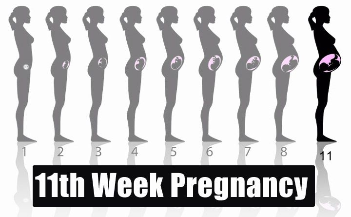 Pin On Week By Week Pregnancy