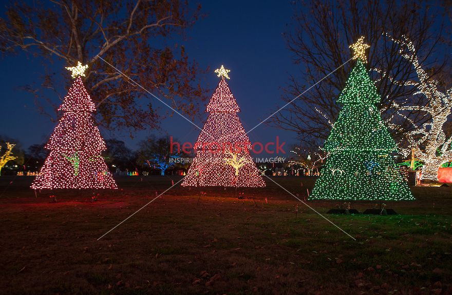 Zilker Park Trail Of Lights Festival S Three Christmas Trees Are Christmas Card Perfect With Room For Ad Copy Text Zilker Park Park Trails Light Trails