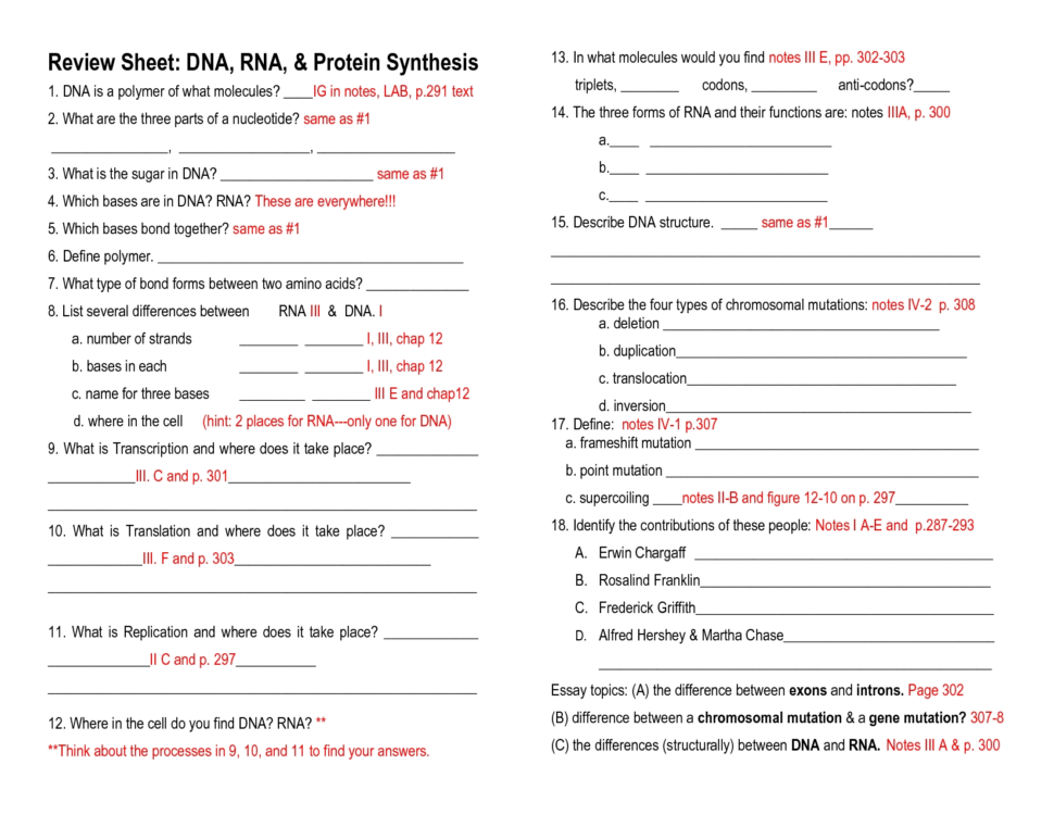 Image result for science stuff worksheets answers | Biology class ...