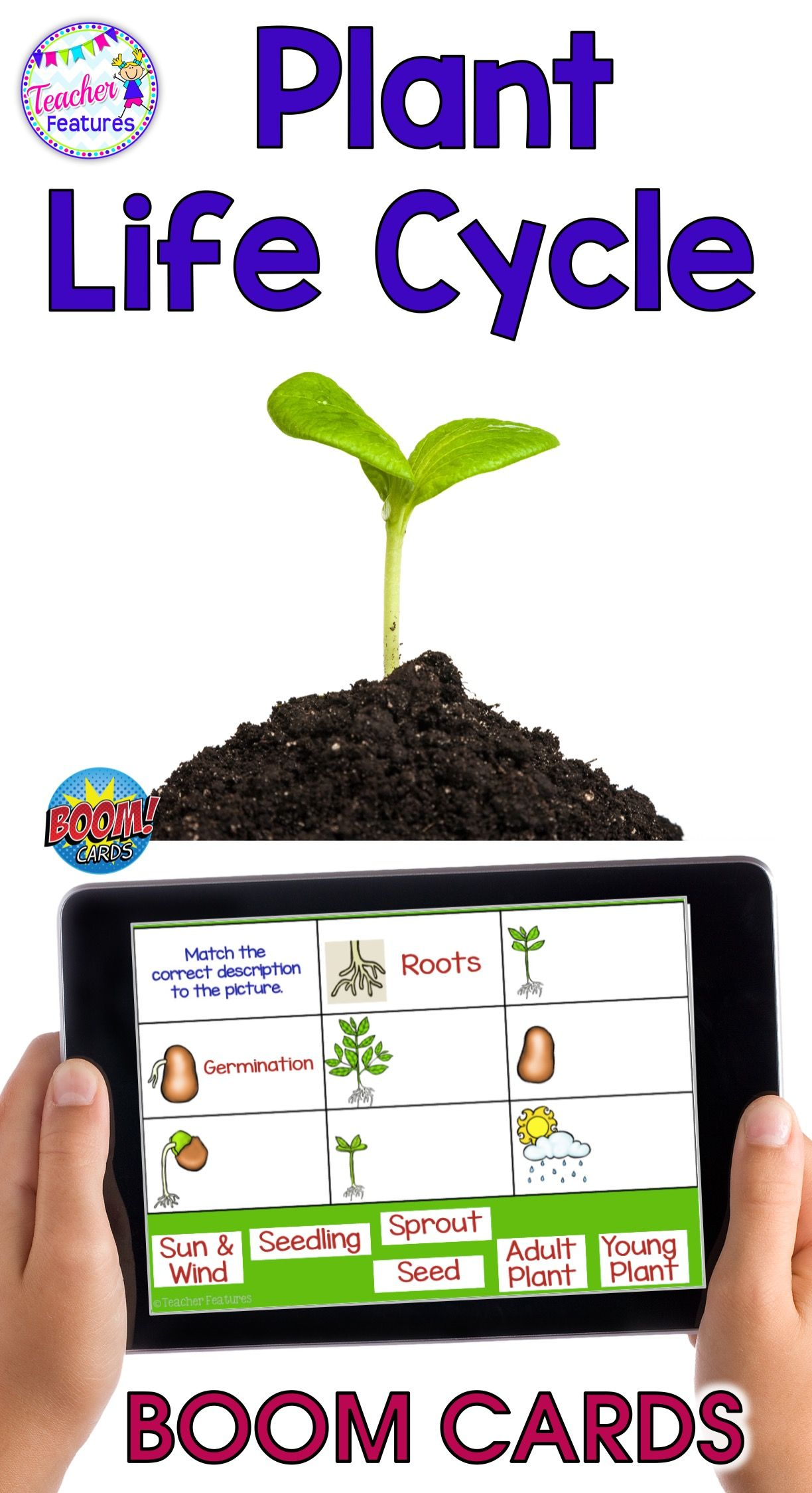 Distance Learning 2nd Grade Boom Cards Spring Science