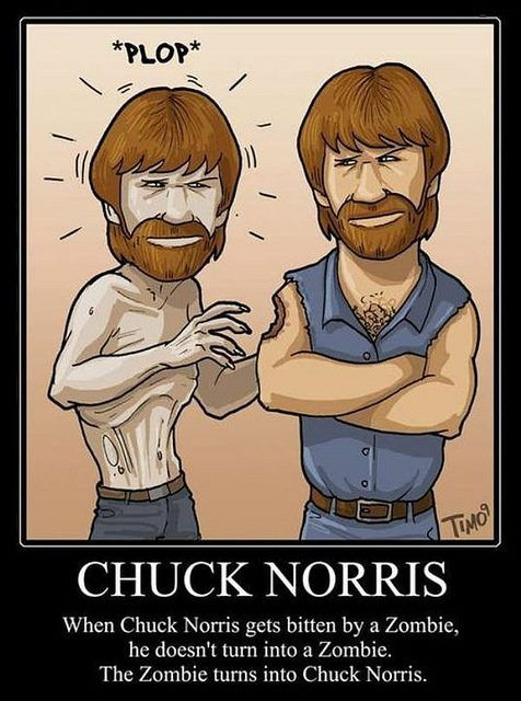 Chuck Norris, for the win ... Chuck noris punch in the ovaries lol