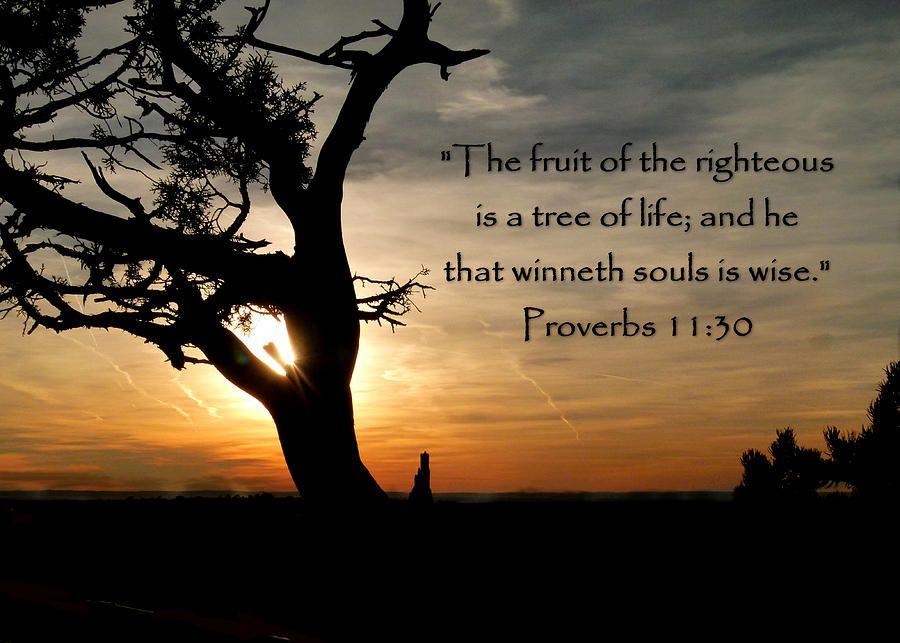 Proverbs 11, Proverbs, Scripture Art