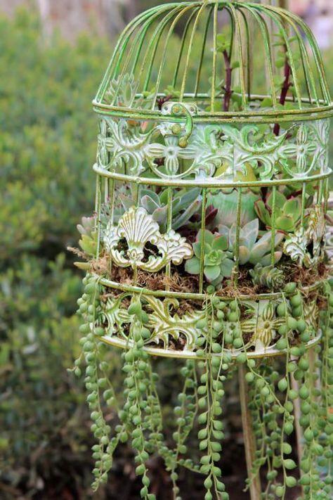 47 Fabulous Succulent Planting Ideas With Diy Tutorials You Must Look At Succulent Garden Diy Succulents Diy Birdcage Planter