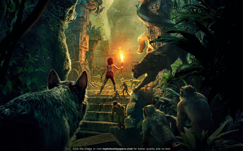 The Jungle Book 2016 HD wallpaper Jungle book movie